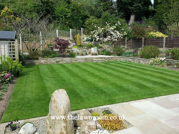 Lawn Treatment