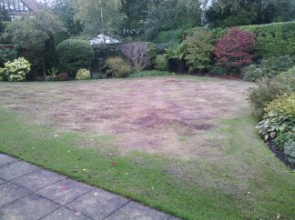 Lawn Care, Bramhall, Stockport, Cheshire