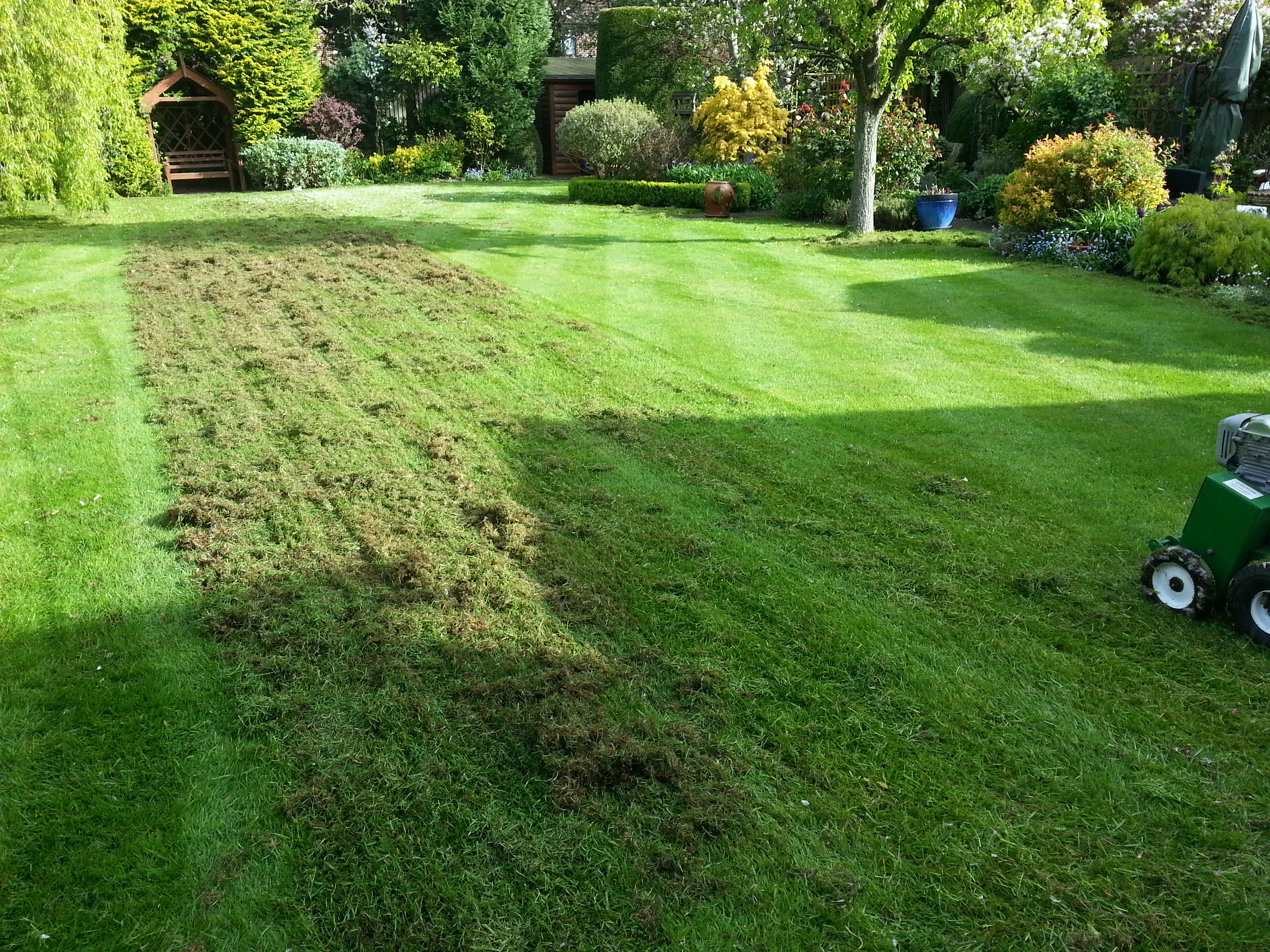 Lawn Scarification, Lawn Care, Cheadle Hulme, Stockport, Cheshire