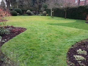 Lawn Care, Mobberley, Cheshire